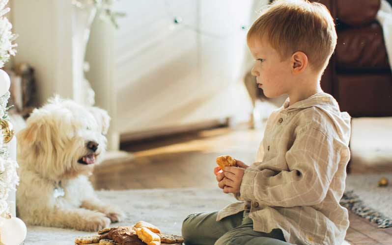 Dogs and small children