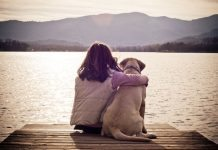 depression for the loss of a dog